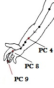 12-Pericardium