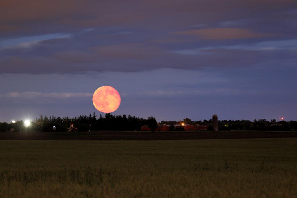 The Harvest Moon Seasonal Transition Tcm World