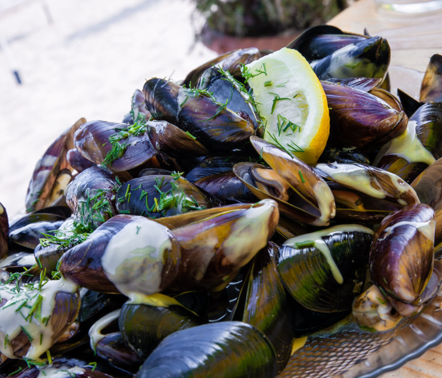 STEAMED MUSSELS AND SAUTÉED FENNEL WITH RICE – TCM World