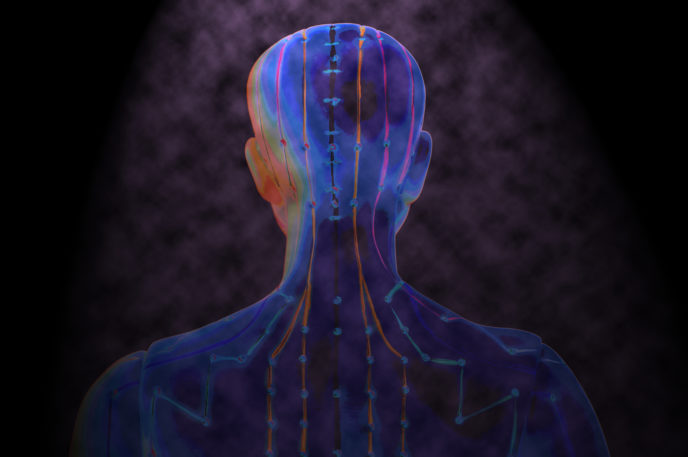 The Bodys Inner Landscape Tcm World