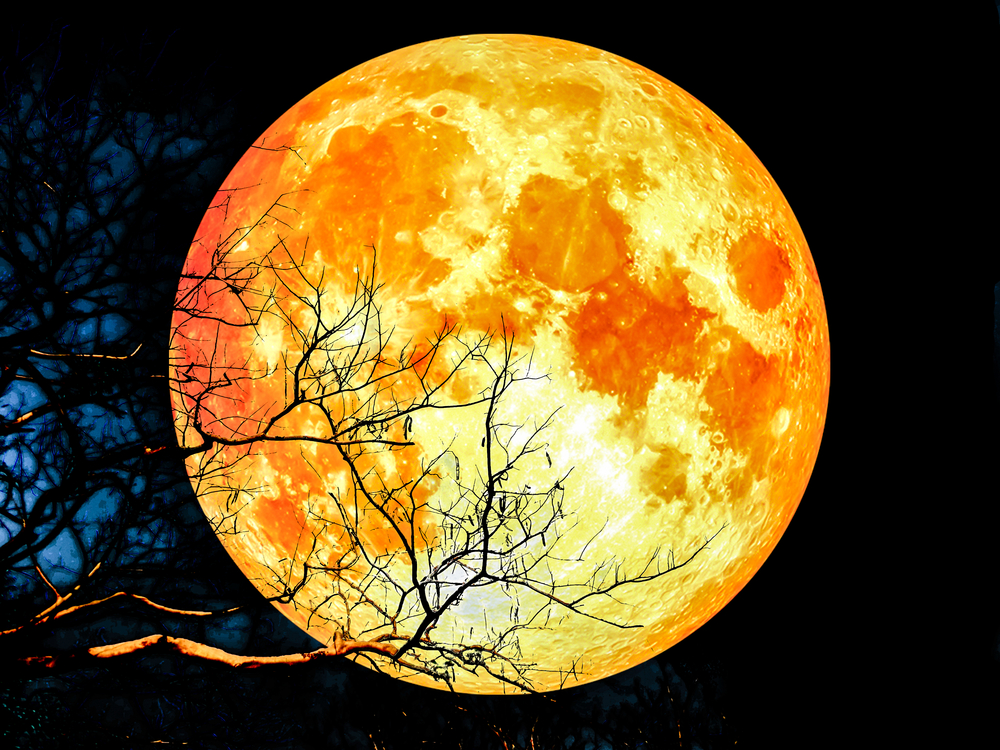 super-blue-blood-moon-2018-rare-mystifying-celestial-event
