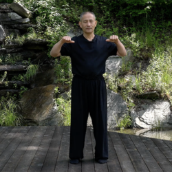 Dragon's Way Qigong