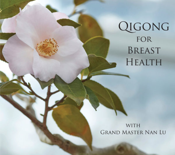 Qigong for Breast health video on demand